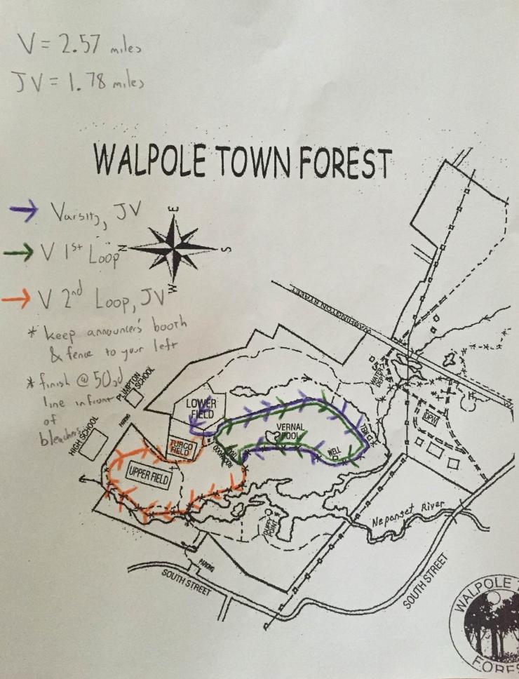 walpole-IMG_3926